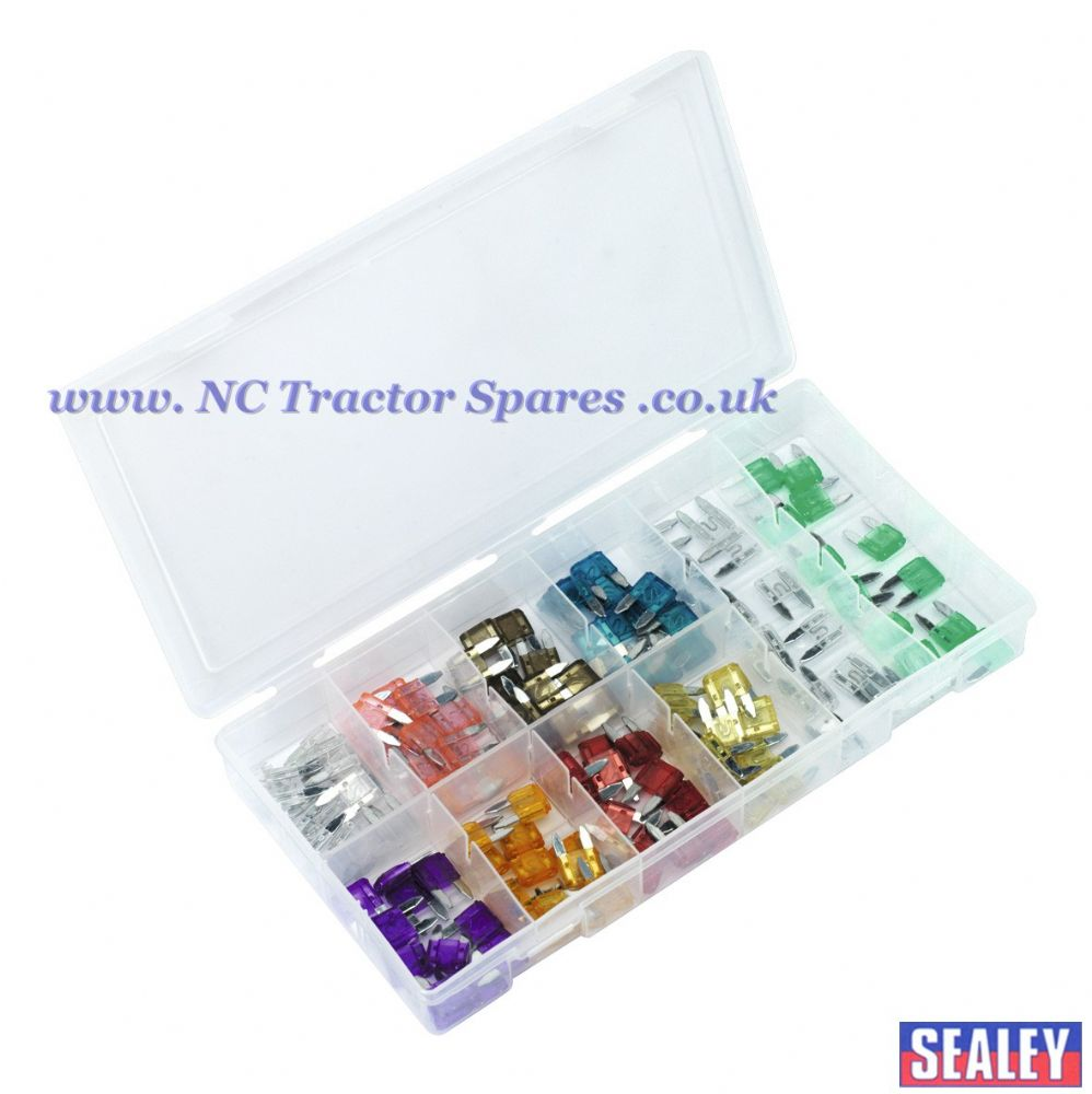 Automotive MINI Fuse Assortment 100pc